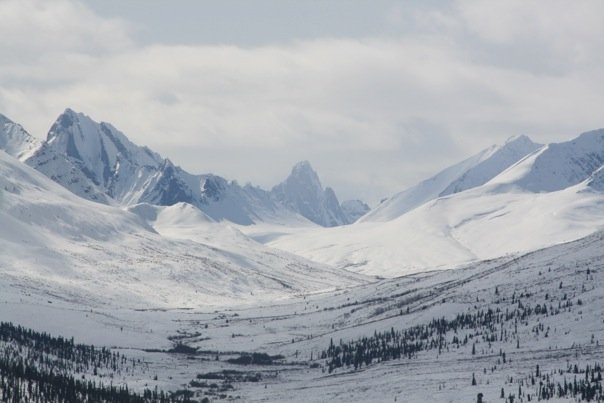 """does this land need protection? """"does this land need protection? (photo of Tombstone Mountains, Jessie Currell)"""