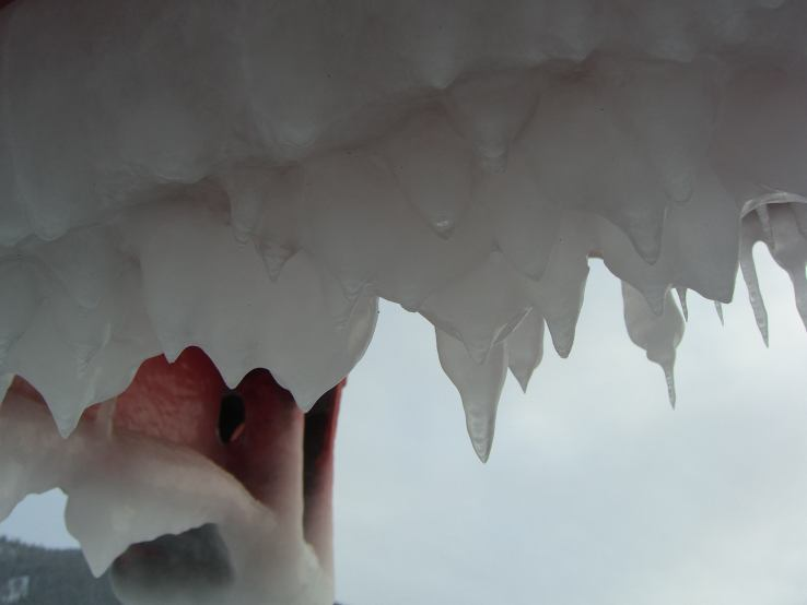 ferry icicles silh-s