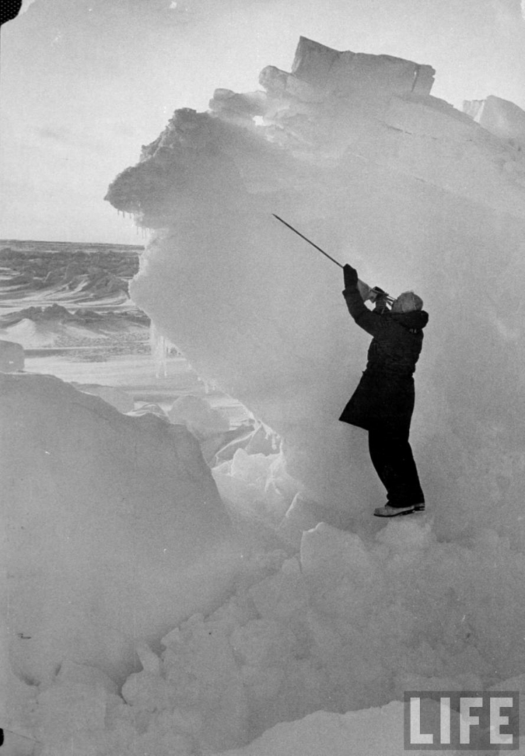 In this September 1952 photo from LIFE magazine, scientist Albert P. Carey uses a pole to searching for microscopic organisms or anything else imbedded in hummocked packed ice (photo George Silk)