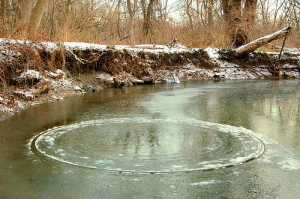 "Brook Tyler's Mississauga ""creek circle"" from Dec 08"